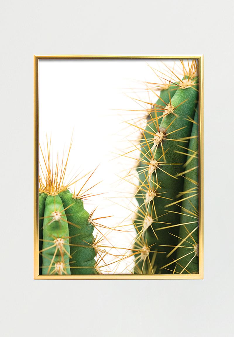Cactus I 30x40